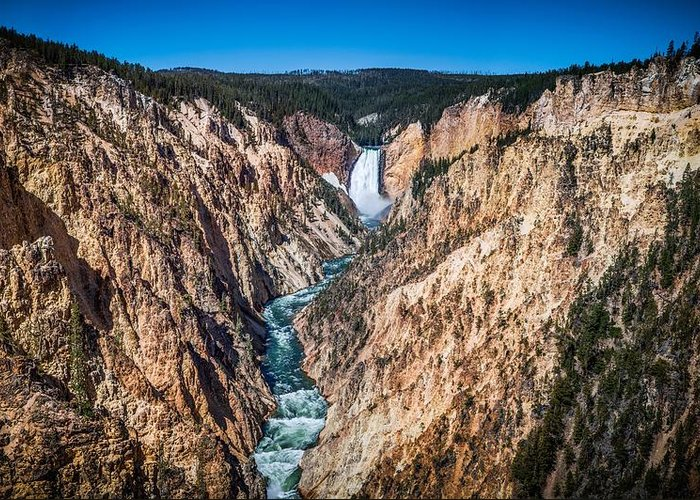 The Grand Canyon Of Yellowstone Greeting Card featuring the photograph The Grand Canyon Of Yellowstone by Brad Boserup
