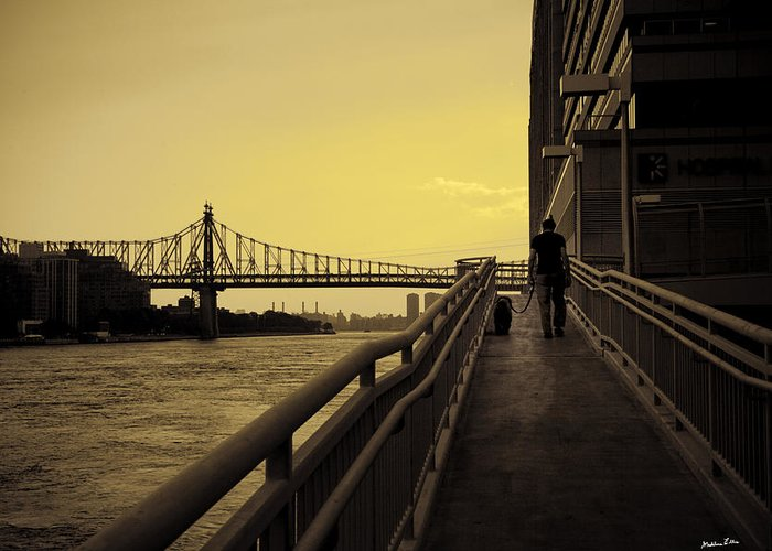 Queensboro Greeting Card featuring the photograph The Long Walk by Madeline Ellis
