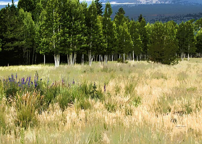 Landscape Greeting Card featuring the photograph The Meadow Digital Art by Phyllis Denton