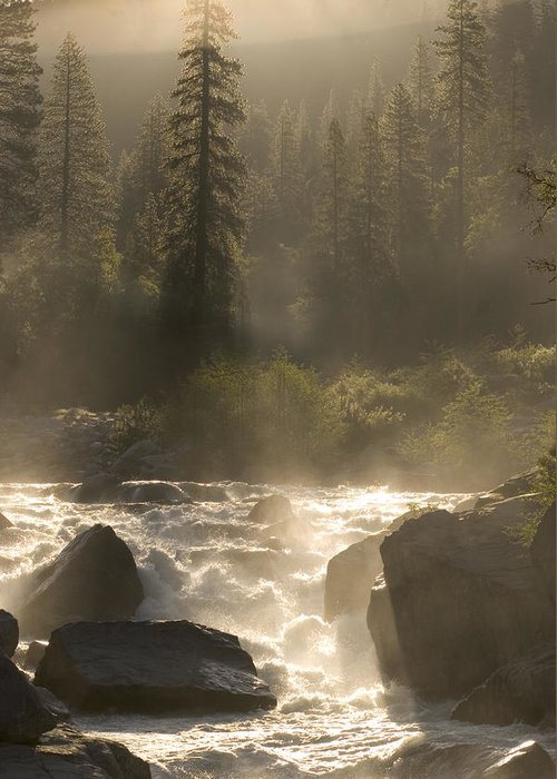 Outdoors Greeting Card featuring the photograph The North Fork Of The Stanislaus River by Phil Schermeister