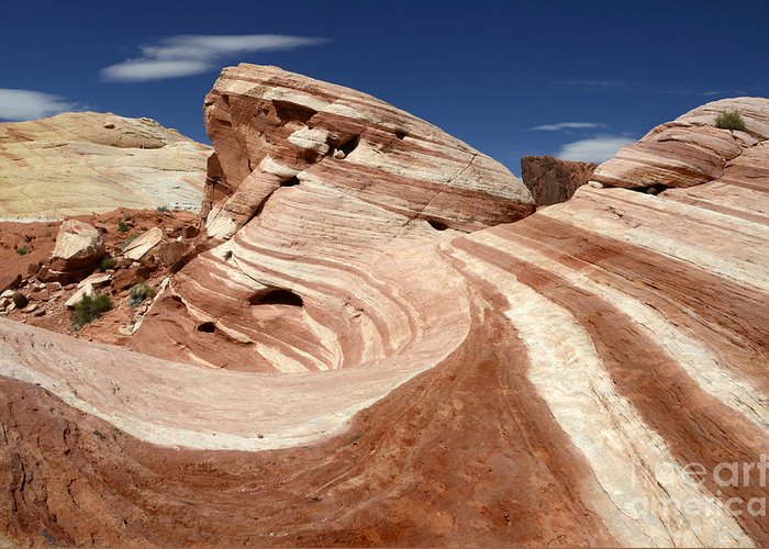 Valley Of Fire Greeting Card featuring the photograph The Purple Wave by Bob Christopher