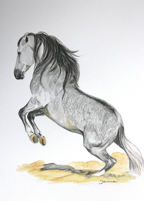 Andalusian Horse Greeting Card featuring the painting The Turn by Janina Suuronen