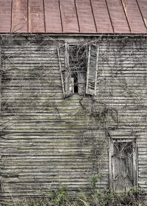 The Window Up Above Greeting Card featuring the photograph The Window Up Above by JC Findley