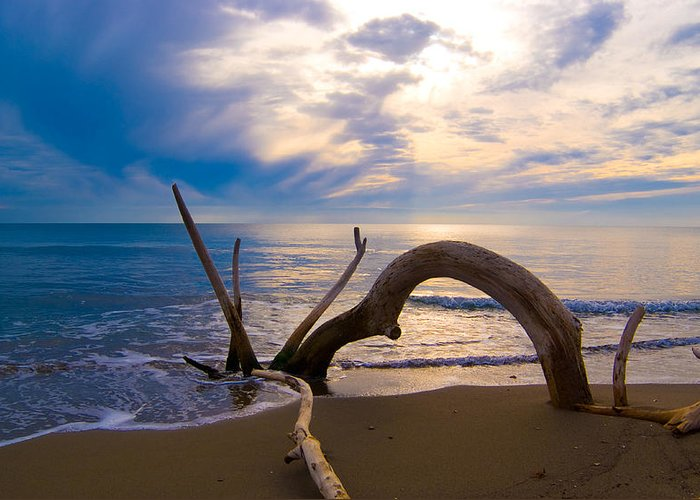 Driftwood Sea Mediterranean Sunset Sky Cloud Water Calm Serenity Greeting Card featuring the photograph The Wooden Arch by Marco Busoni