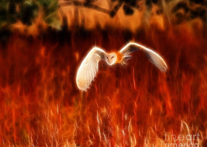 Barn Owl Greeting Card featuring the photograph Through The Fire by Beth Sargent