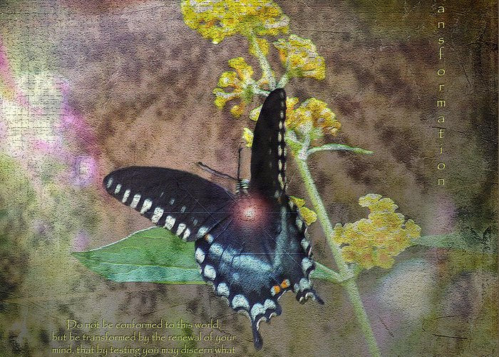 Mixed Media Greeting Card featuring the photograph Transformation by Patricia Griffin Brett