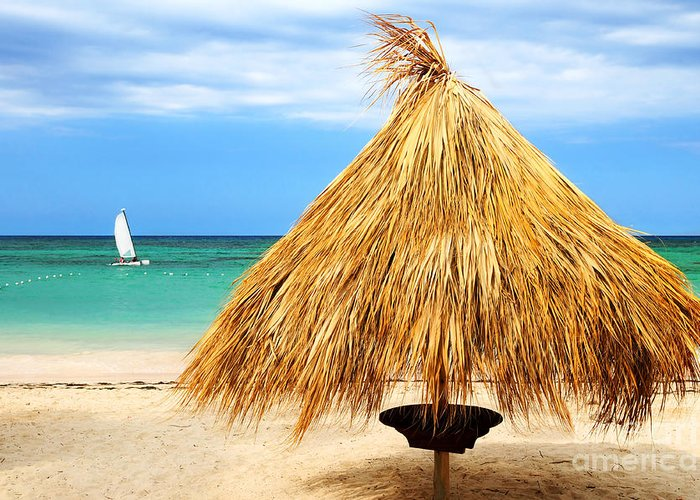Umbrella Greeting Card featuring the photograph Tropical Beach by Elena Elisseeva