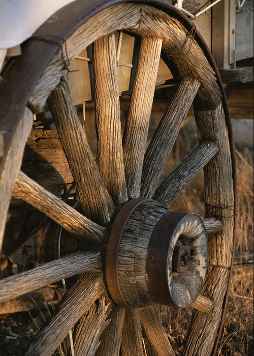 North America Greeting Card featuring the photograph Wagon Wheel On Covered Wagon At Bar 10 by Todd Gipstein