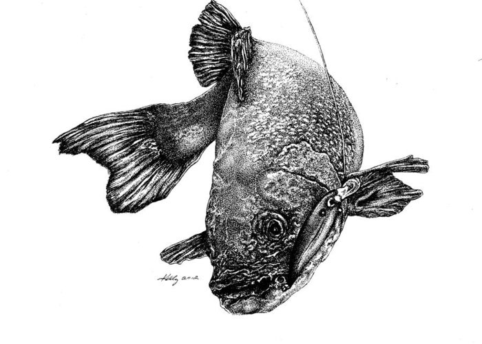 Walleye Greeting Card featuring the drawing Walleye by Kathleen Kelly Thompson