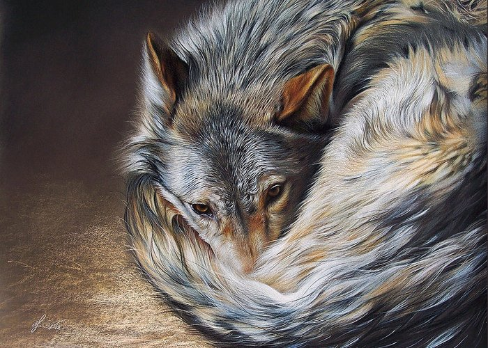 Wolf Greeting Card featuring the drawing Watchful Rest by Elena Kolotusha