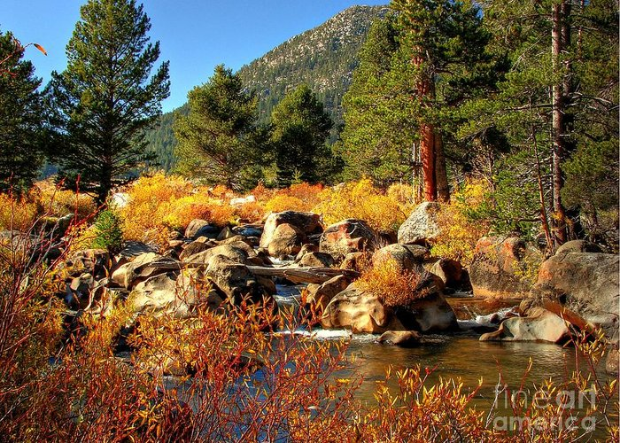 West Fork Carson River Greeting Card featuring the photograph West Fork Of The Carson River Fall Colors by Scott McGuire