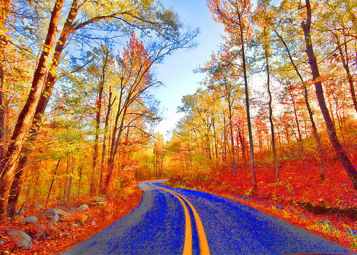 Talemina Scenic Drive Arkansas Greeting Card featuring the photograph Where The Road Snakes by Douglas Barnard