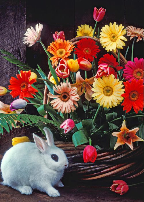 Bunny Greeting Card featuring the photograph White Rabbit By Basket Of Flowers by Garry Gay