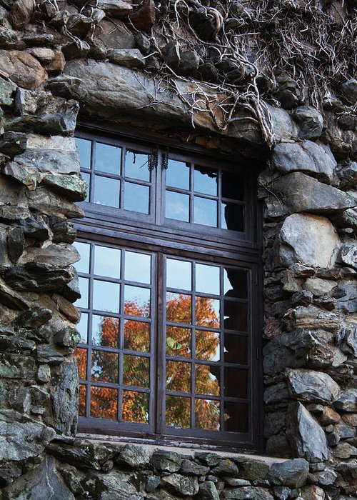 Window Greeting Card featuring the photograph Window To The World by Sandi Blood