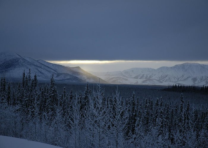 Snow Greeting Card featuring the photograph Winter Sun Alaska by John Wolf