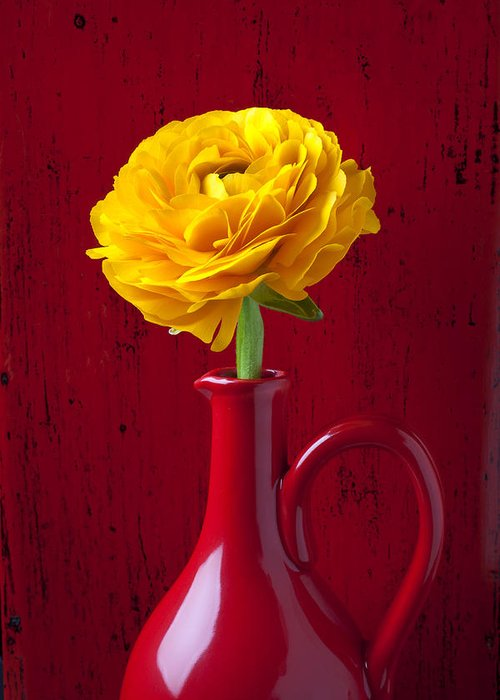 Yellow Ranunculus Greeting Card featuring the photograph Yellow Ranunculus In Red Pitcher by Garry Gay