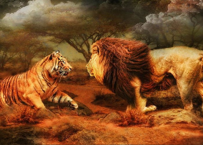 Lion Greeting Card featuring the photograph No Mercy by Trudi Simmonds