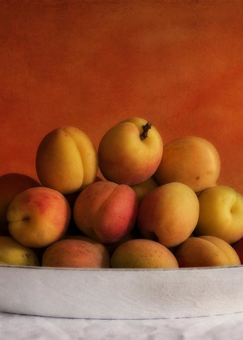 Apricot Greeting Card featuring the photograph Apricot Delight by Priska Wettstein