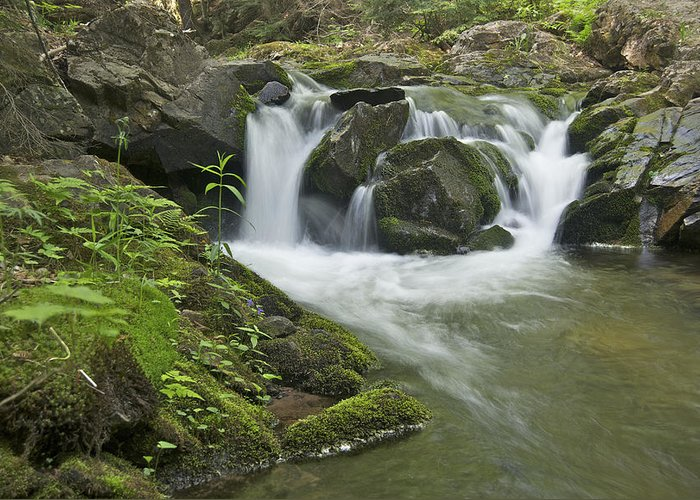 Landscape Greeting Card featuring the photograph Big Pup Falls 3 by Michael Peychich
