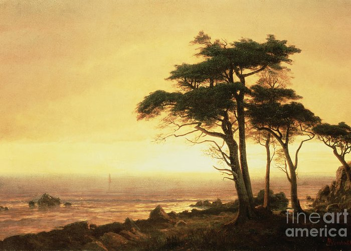 Albert Greeting Card featuring the painting California Coast by Albert Bierstadt