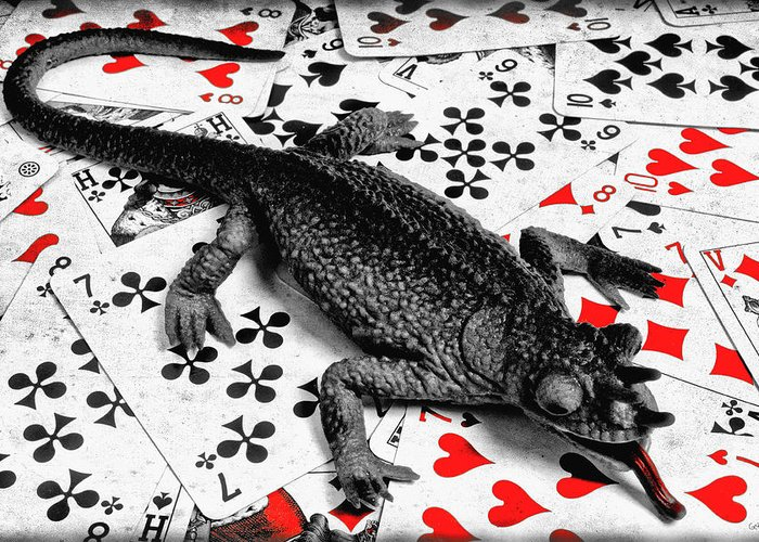 Lizard Greeting Card featuring the photograph Lucky by Jeff Gettis