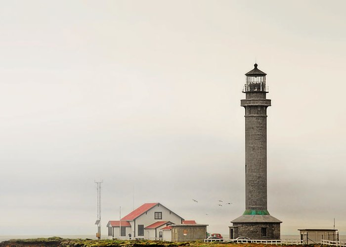 Point Arena Lighthouse Greeting Card featuring the photograph Point Arena Lighthouse Ca by Christine Till