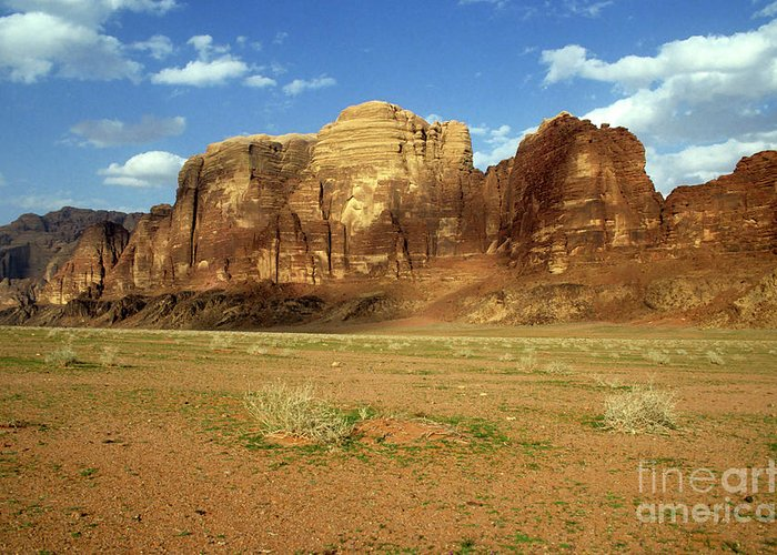 Arid Greeting Card featuring the photograph Sparse Tussock And Rock Formations In The Wadi Rum Desert by Sami Sarkis
