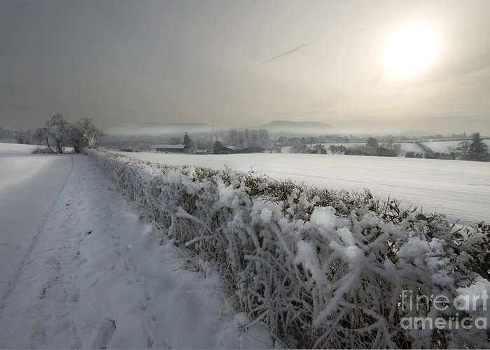 Winter Greeting Card featuring the photograph Frozen Britain by Angel Tarantella