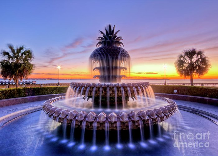 Pineapple Greeting Card featuring the photograph Pineapple Fountain Charleston Sc Sunrise by Dustin K Ryan