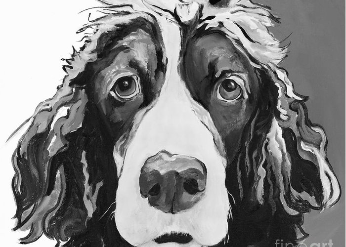 Black And White Springer Spanial Greeting Card featuring the painting Sadie by Pat Saunders-White
