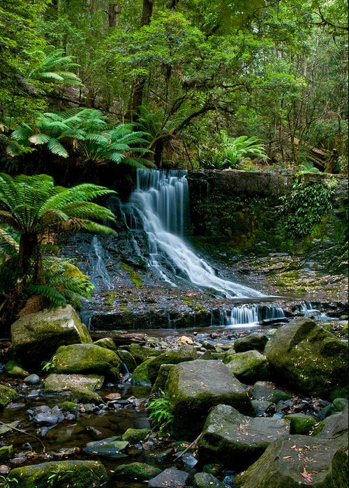 Adventure Greeting Card featuring the photograph Waterfall In Deep Forest by Ulrich Schade