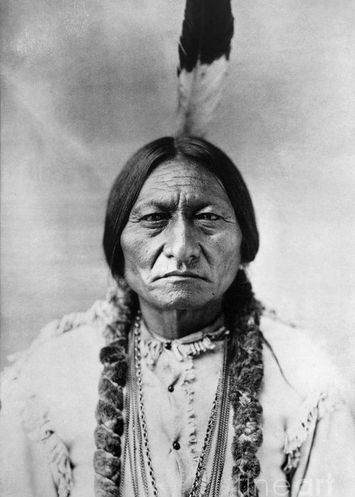 19th Century Greeting Card featuring the photograph Sitting Bull (1834-1890) by Granger