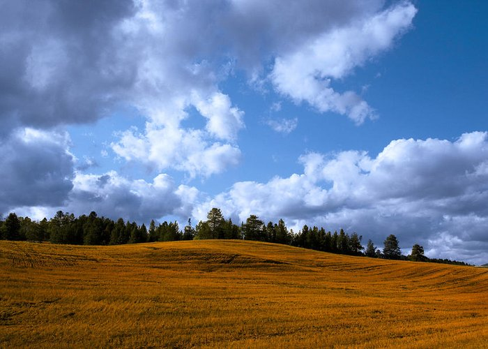 Blue Clean Clear Clouds Color Colorful Country Field Flora Freed Greeting Card featuring the photograph Mountain Farm by Mark Smith