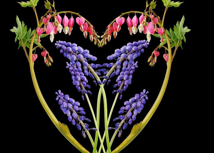Flowers Greeting Card featuring the photograph A Heart Of Hearts by Michael Peychich