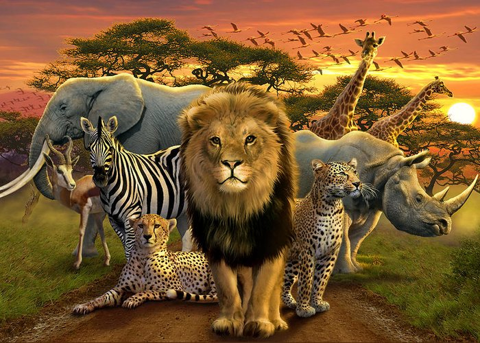 Africa Greeting Card featuring the photograph African Beasts by Andrew Farley