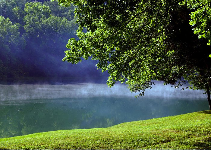 Fog Greeting Card featuring the photograph After A Warm Summer Rain by Susanne Van Hulst