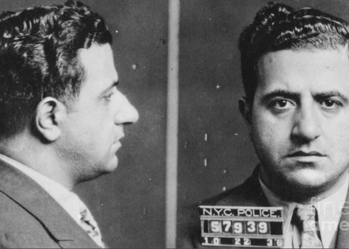 1936 Greeting Card featuring the photograph Albert Anastasia (1902-1957) by Granger