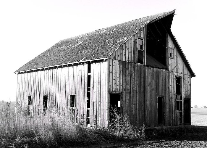 Barn Greeting Card featuring the photograph Albert City Barn 3 by Julie Hamilton