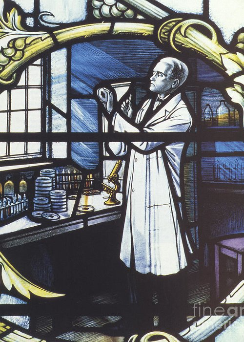 Science Greeting Card featuring the photograph Alexander Fleming, Scottish Biologist by Science Source