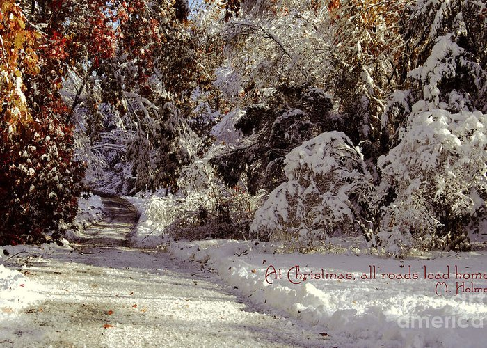 Winter Greeting Card featuring the photograph All Roads Lead Home by Sabine Jacobs