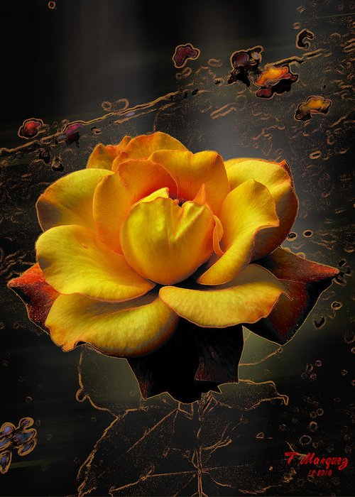Flower Greeting Card featuring the photograph Ambrosia by Tony Marquez