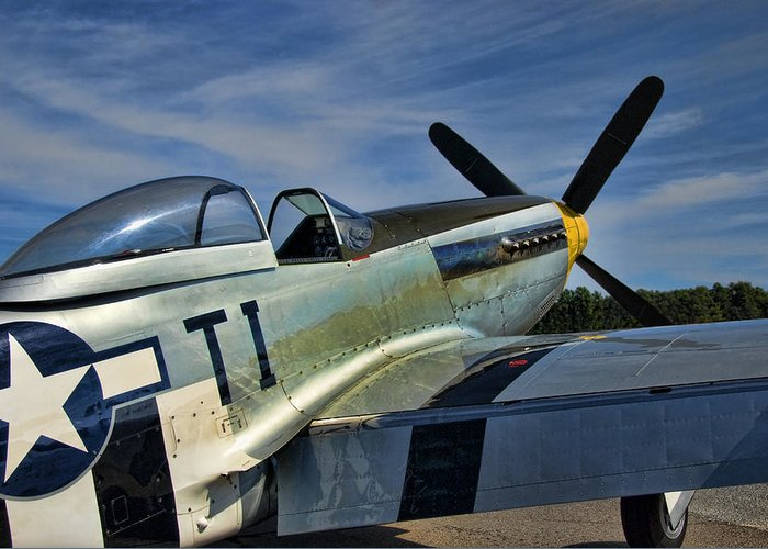Angels Playmate Greeting Card featuring the photograph Angels Playmate P-51 by Steven Richardson