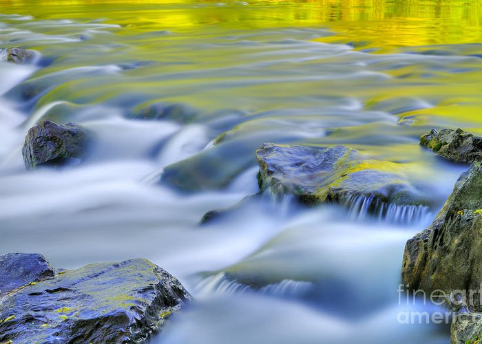 River Greeting Card featuring the photograph Argen River by Silke Magino