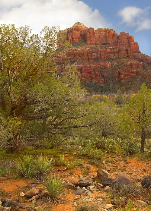 Sedona Greeting Card featuring the photograph Arizona Outback 3 by Mike McGlothlen