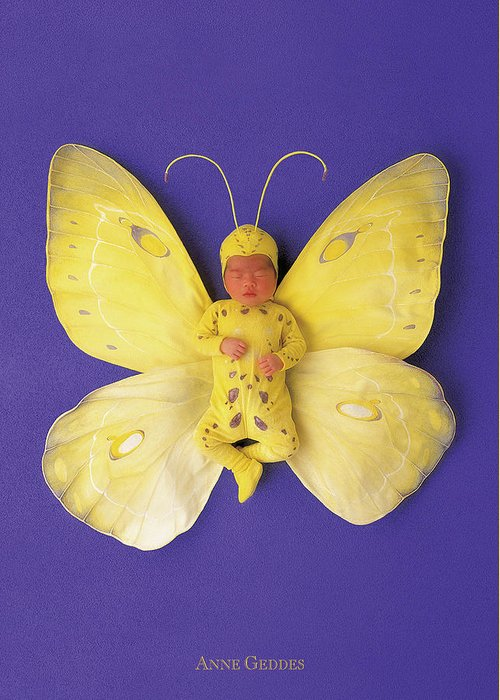 Baby Greeting Card featuring the photograph Fiona Butterfly by Anne Geddes