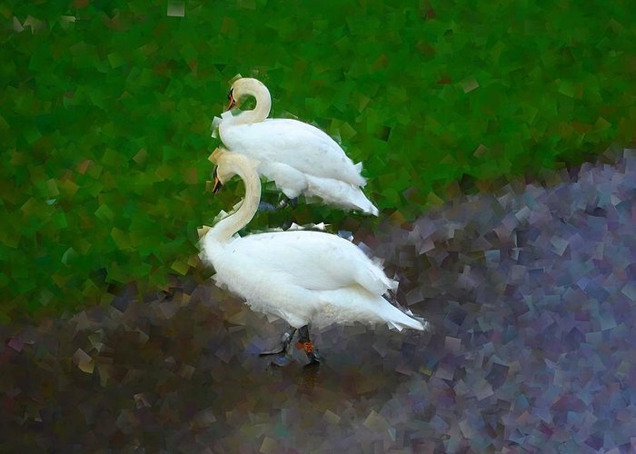 Swans Greeting Card featuring the photograph Asymmetry by Roberto Alamino