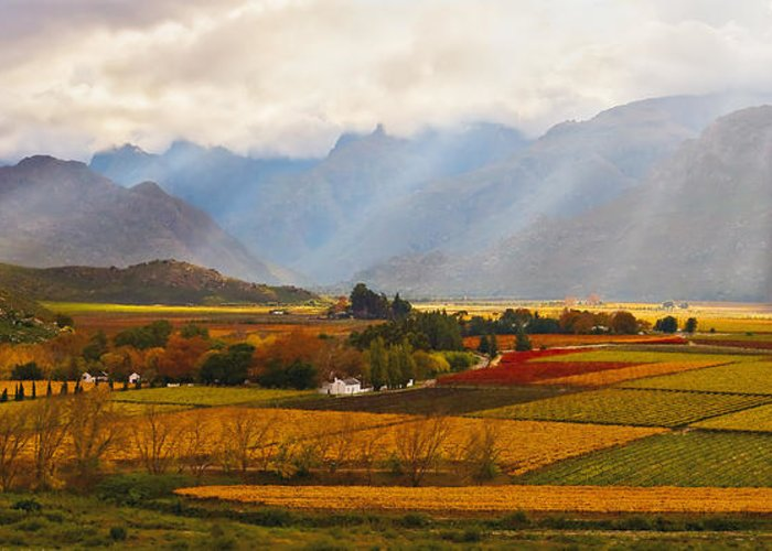 Landscape Canvas Print Greeting Card featuring the photograph Autumn - Hex-river Valley by Basie Van Zyl