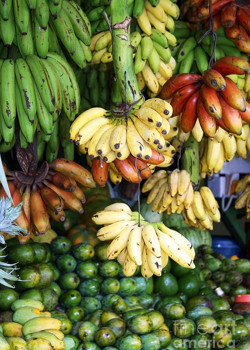 Arrangement Greeting Card featuring the photograph Banana Display. by Jane Rix