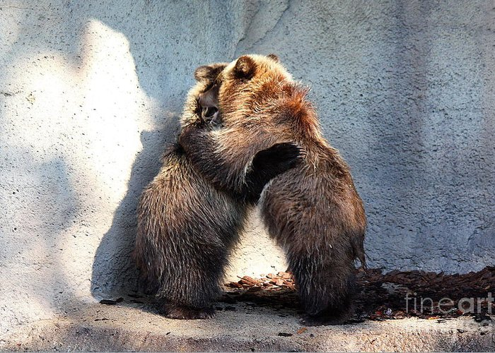 Cub Greeting Card featuring the photograph Bear Hugs. No.2 by RL Clough