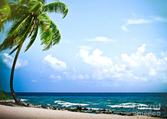 ryankellyphotography@gmail.com Greeting Card featuring the photograph Belize Private Island Beach by Ryan Kelly